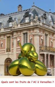 Les fruits de l'AC à Versailles